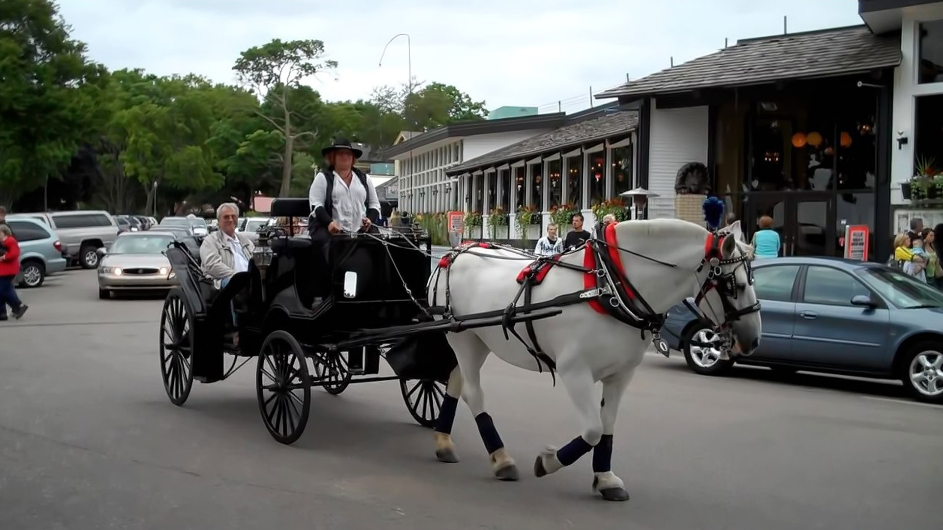 lake-geneva-horse-carriage-ride1
